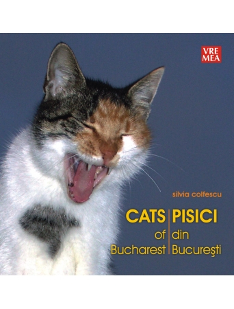 PisicidinBucuresti